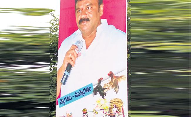 Telangana leaders Going To Godavari Districts For Hen Fights - Sakshi
