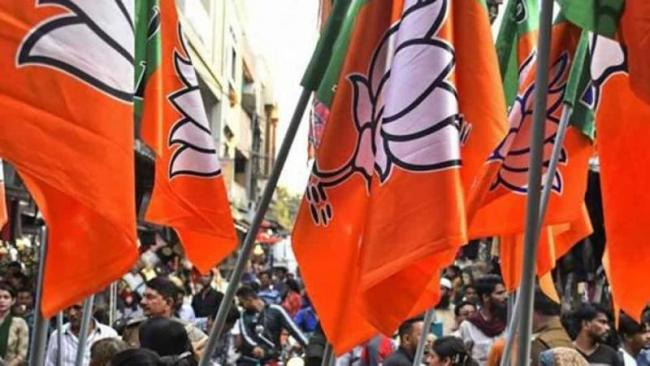BJP Get More Donations For This Year - Sakshi
