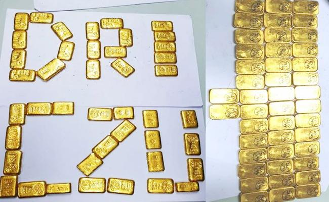 Gold Coins Caught in Tamil Nadu Airport Tamil Nadu - Sakshi