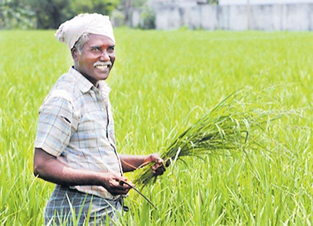 Arun Jaitley hints at farm relief package for farmers - Sakshi