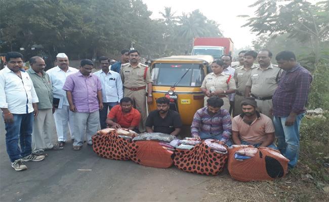 Maijuana Smuggling in East Godavari - Sakshi