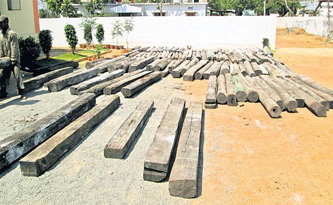 Wood Smugglers Arrested  In Medak - Sakshi