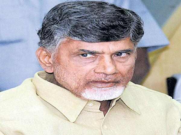 Chandrababu about Chukkala Bhumulu in the video conference of collectors - Sakshi