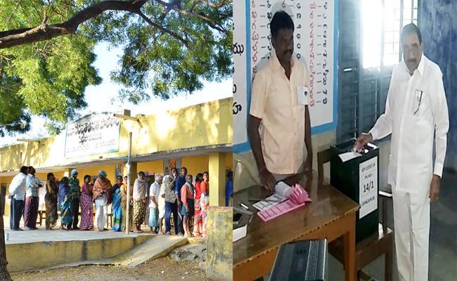 TRS Speed In Telangana Panchayat Election - Sakshi