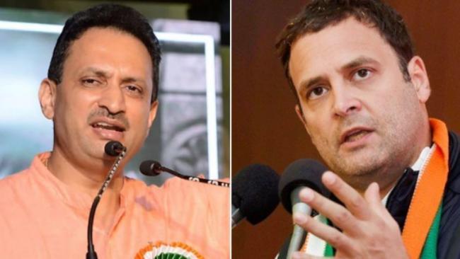 Anant Hegde Calls Rahul Gandhi Hybrid Specimen - Sakshi