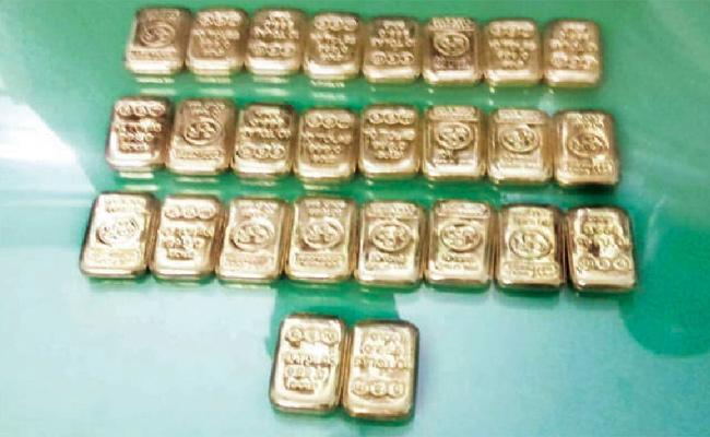 Gold Biscuits Find In Bush Tamil Nadu - Sakshi