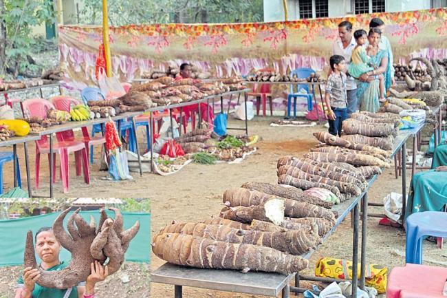 beets forming in karnataka - Sakshi