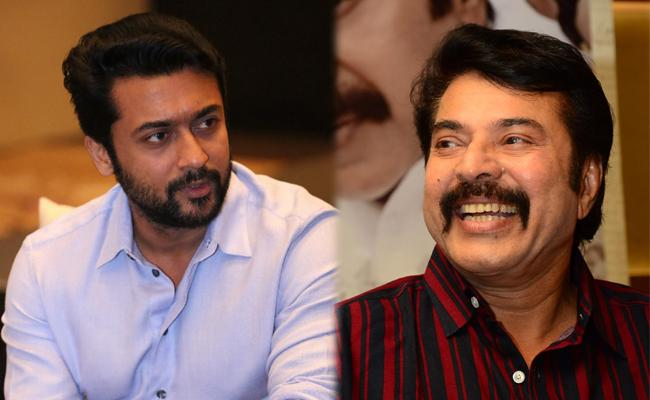 Surya Praised Mammootty About Yatra And Peranbu Movies - Sakshi