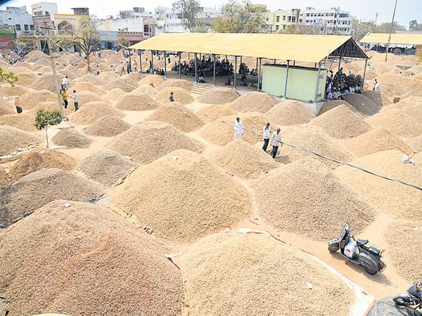 40 thousand bags of peanuts sold for the same day in the market - Sakshi