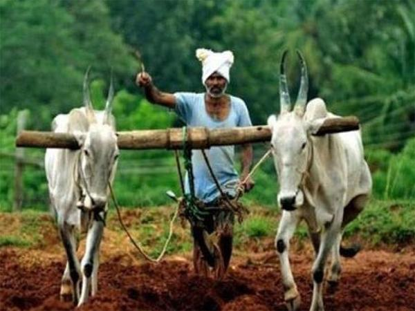 Assistance to farmers in combination with the Central Govt - Sakshi