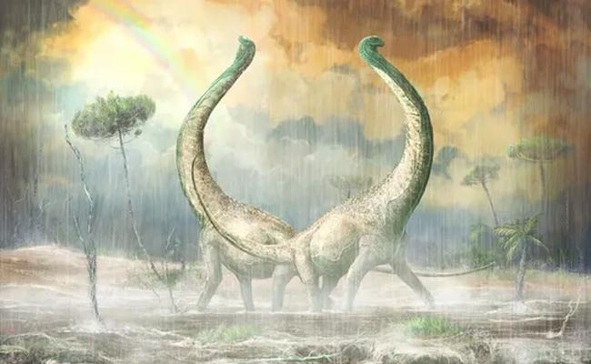 heart shaped tail in Newly discovered dinosaurs - Sakshi