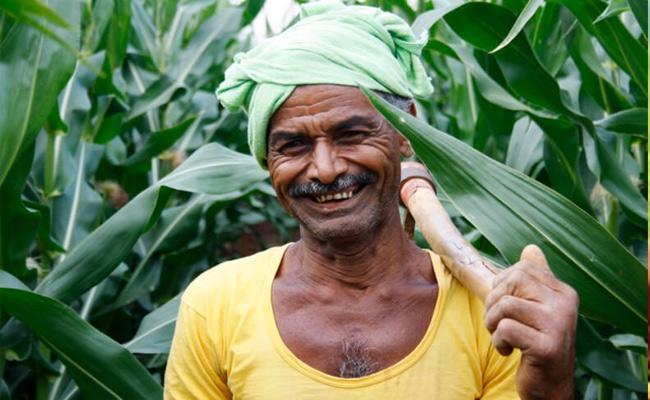 Union Budget 2019  Full Happy Farmers - Sakshi