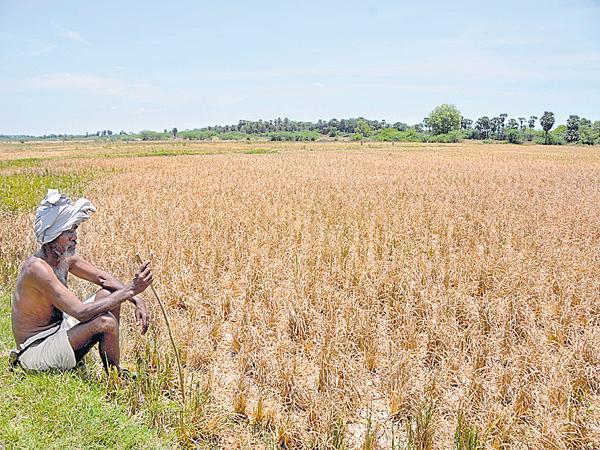 Farmers in the Huge Depression - Sakshi