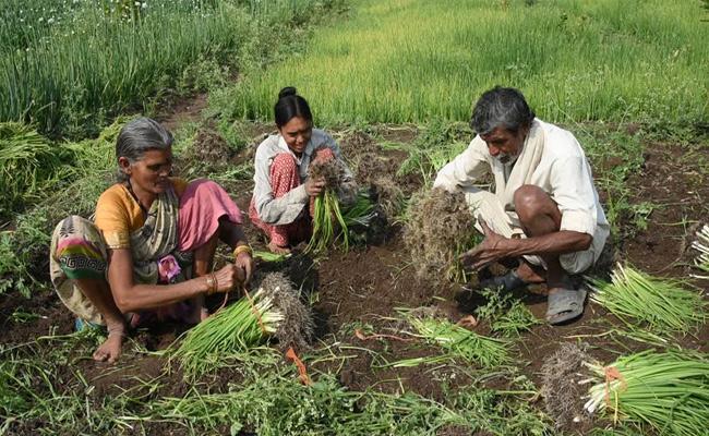 KCR Budget Good News To Farmers - Sakshi