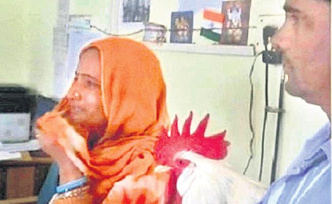 Ruckus in Madhya pradesh Rooster bites girl - Sakshi