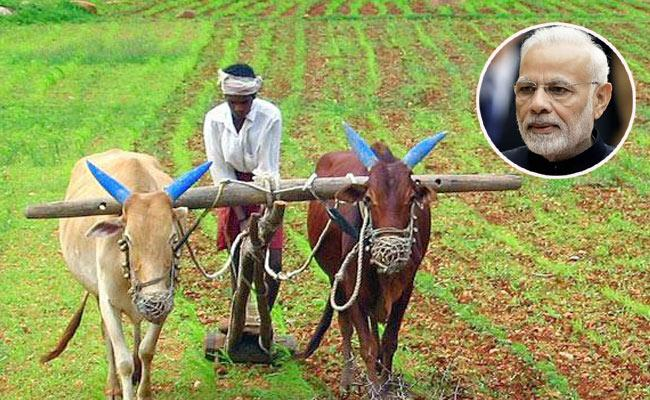 Union Govt Releases Directions To PM Kisan Beneficiaries - Sakshi