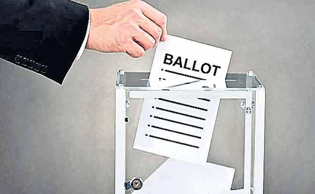 Little Bit Majority Winners In Anakapalli MP Segment - Sakshi