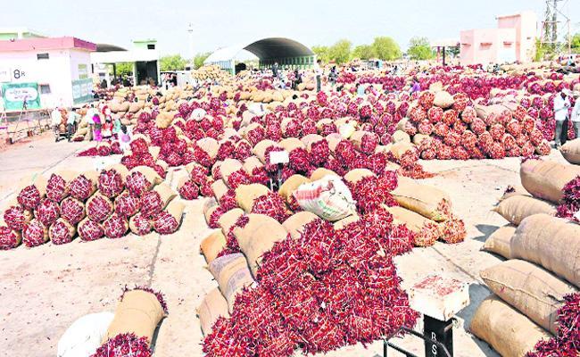 Mirchi Crop Sales At Mirchi Yards - Sakshi