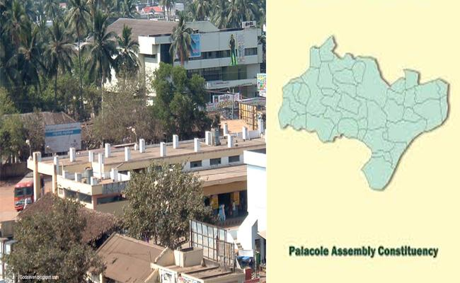 Palakollu Constituency Political And Geographical Overview - Sakshi