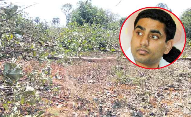 Mangalagiri Constituency Land Grabbers Happy With Nara Lokesh - Sakshi