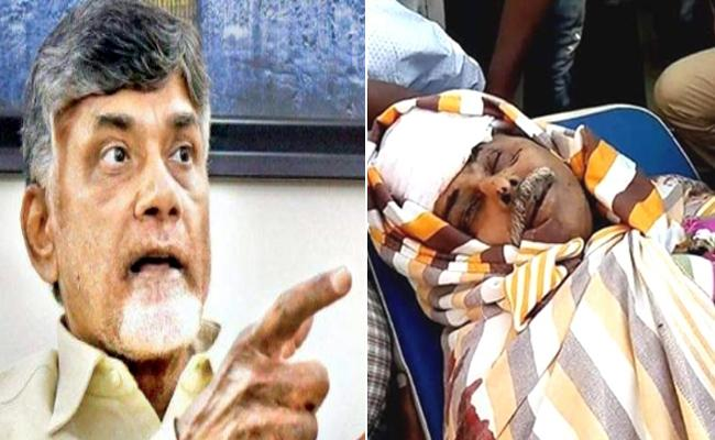 Chandrababu Directions To SIT In Ys Vivekananda Reddy Murder Case - Sakshi