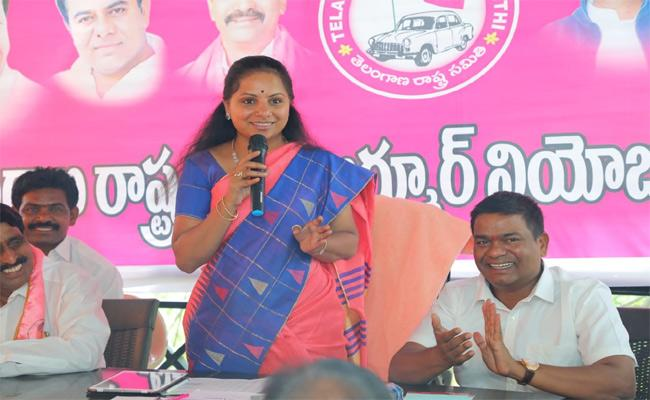 MP Kavitha Said Hard Work Leaders Are Recognised In TRS Party - Sakshi