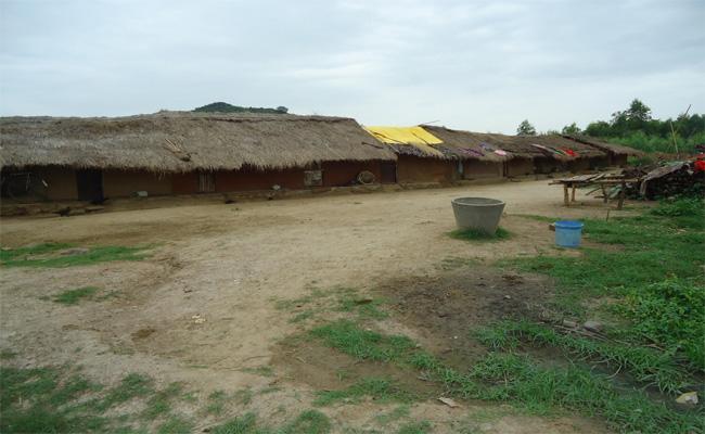 What Happened To Anandapuram Village In Srikakulam  - Sakshi