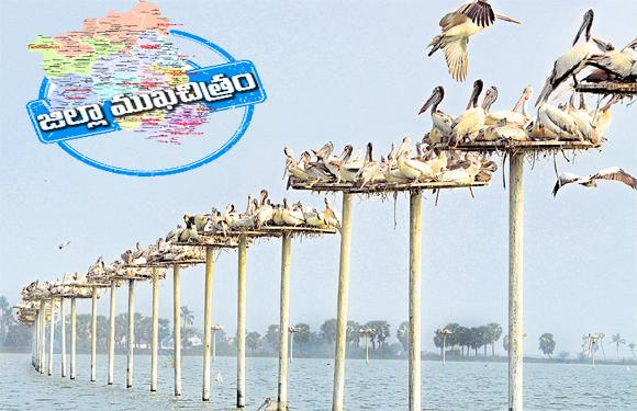 West Godavari District The Symbol Of Political Consciousness is Calm - Sakshi