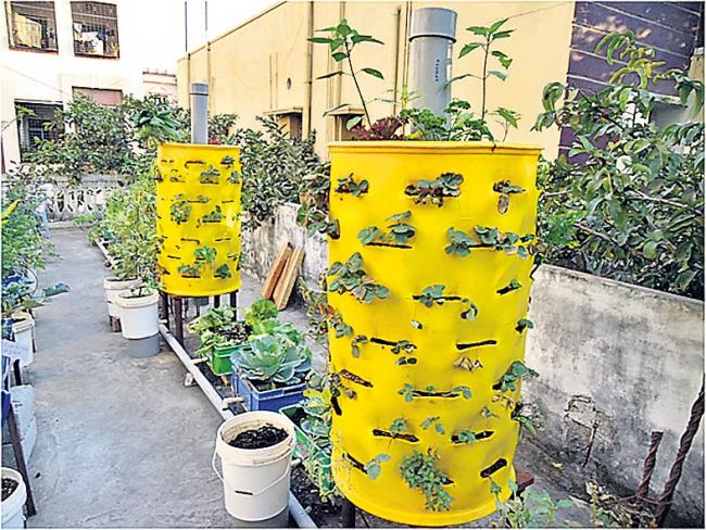Vortical Tower Garden is useful for home gardening - Sakshi