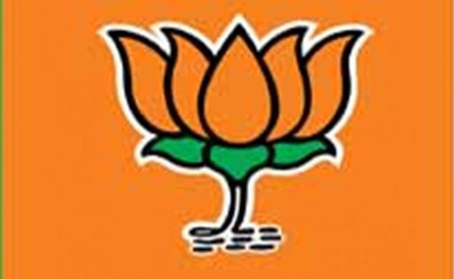BJP Decrease In District vikarabad - Sakshi