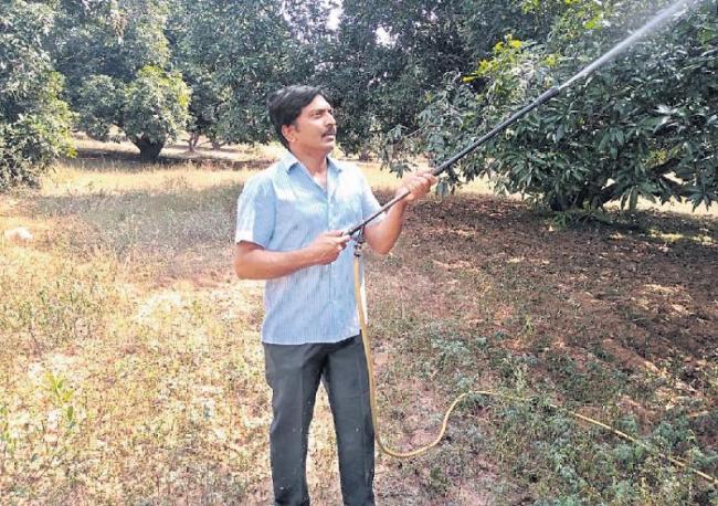 Jagadeesh Reddy Organic Farmer - Sakshi
