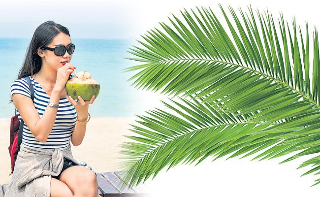 summer special story on Coconut water - Sakshi