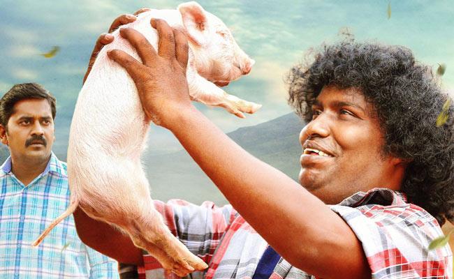 Yogi Babu Panni kutti Movie By Lyca Productions - Sakshi