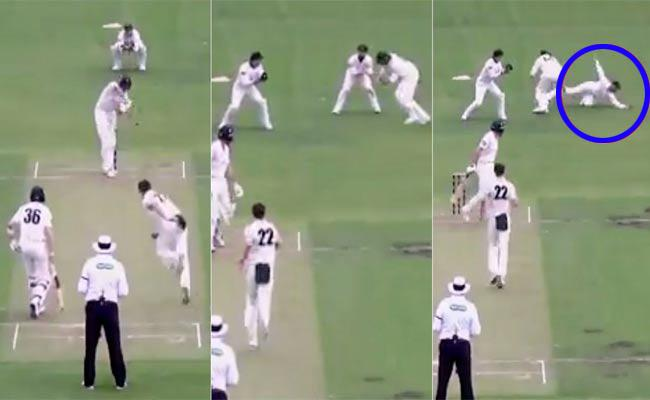 Matthew Wade Amazing Catch In Sheffield Shield Trohy - Sakshi