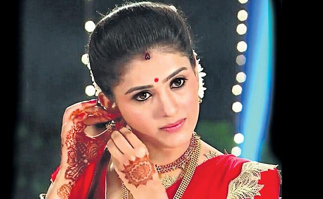 Telugu serial has been introduced by the tanuja - Sakshi