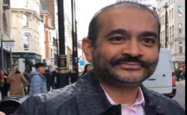 Nirav Modi Arrested In London - Sakshi