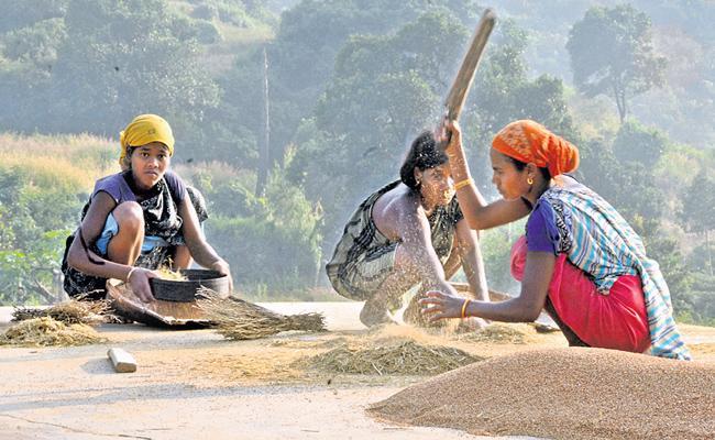 Odisha Andhra Pradesh Border Villagers Caste Vote In Both States - Sakshi