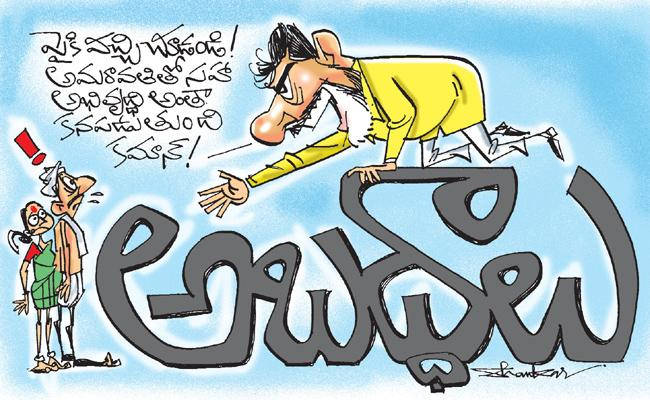 Chandrababu Naidu False Statements On Andhra Pradesh Development - Sakshi