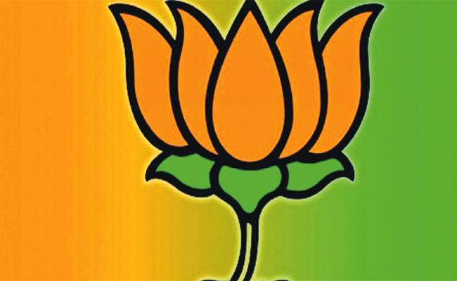 BJP Graph in Telangana Lok Sabha Election - Sakshi