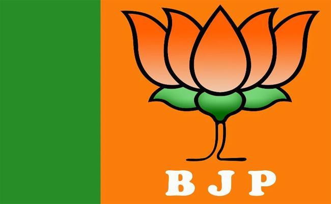 BJP Releases Election Manifesto In Andhra Pradesh - Sakshi