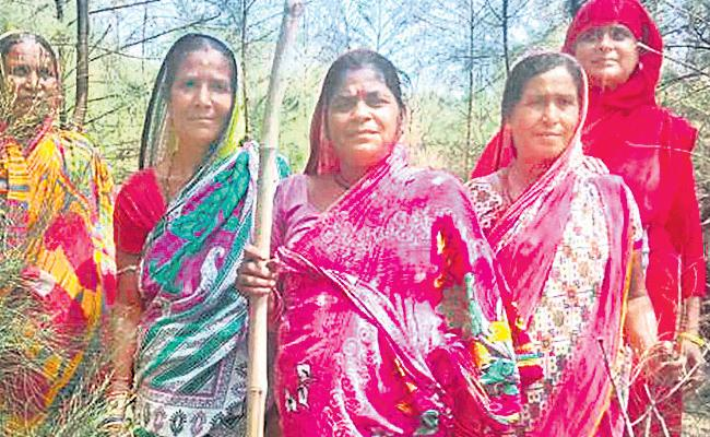 Forests are preserved for 20 years from the smugglers - Sakshi