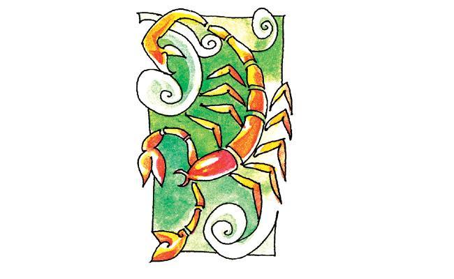 2019 To 2020  Scorpio Zodiac Sign Horoscope - Sakshi