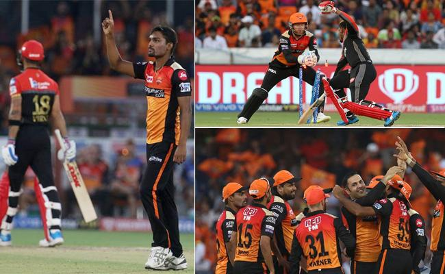 Sunrisers Beat RCB by 118 Runs - Sakshi
