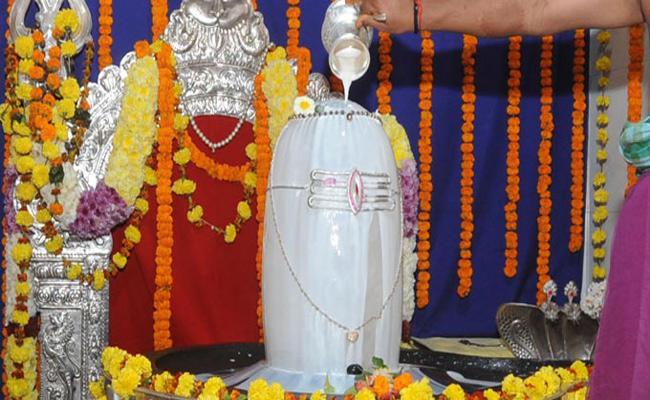 Maha Shivaratri Celebrations In Vizianagaram - Sakshi