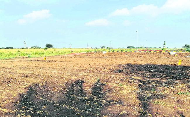 Real Estate Land Demand In Zaheerabad - Sakshi