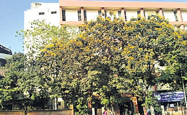 Showcause Notice to Commercial Taxes Department - Sakshi