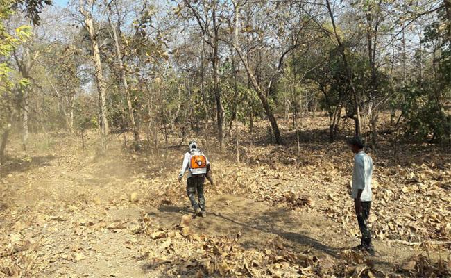 Firelines Success In Mancherial - Sakshi