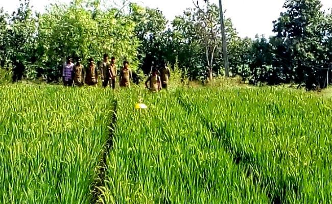 Nalgonda Forest Lands Are Undergoing Aggression. - Sakshi