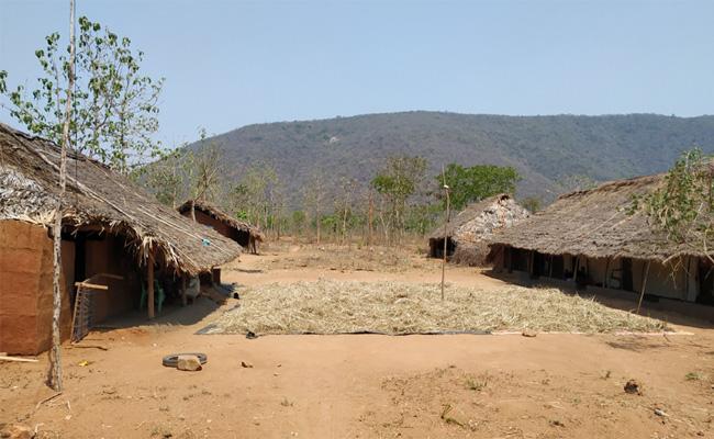 Tribal People Living In Unnamed Village in Vizianagaram - Sakshi