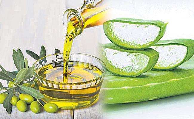 Aloe beauty tips - Sakshi